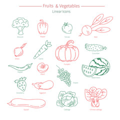 Vector collection of vegetables and fruits