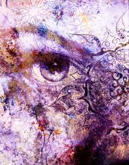 goddess women eye, multicolor background with oriental mandala ornament. eye contact.