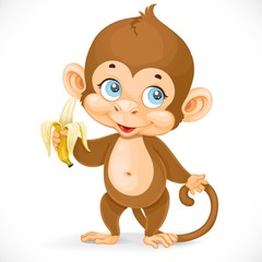 Cute baby monkey with banana stand on a white background