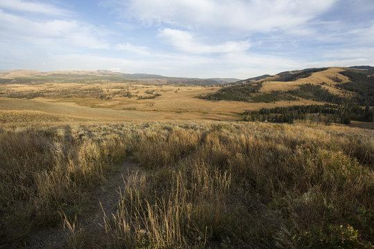 Ridges and yellow plains near Mt. Washburn in Yellowstone, Wyoming.