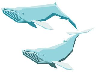 Humpback whale set