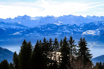 Aluminium Prints Panoramic skyline view of snow-capped mountains over lake Lucern