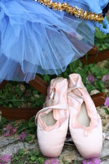 Tutu and ballet slippers