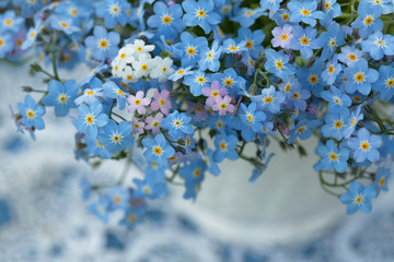 Forget-me-no flowers in a vase