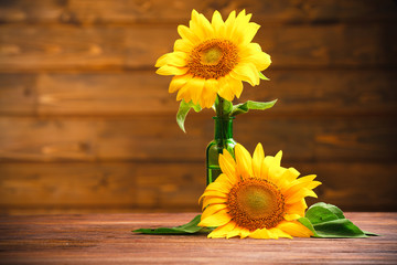 Beautiful bright sunflowers in vase on wooden background