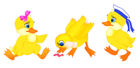 set of little duck cartoon
