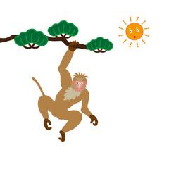 松の木にぶら下がる薄茶色のオスのサルのイラスト素材