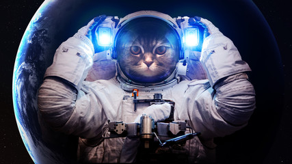 Acrylic Prints Nasa Beautiful cat in outer space. Elements of this image furnished by NASA