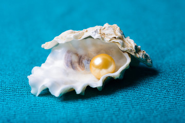 Pearl in shell