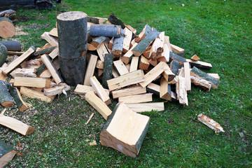 Foto op Canvas Brandhout textuur Cut firewood on grass