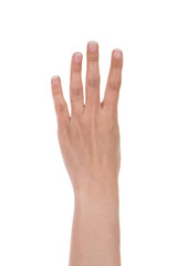 hands show the number four