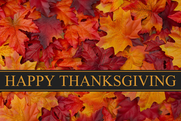 Thanksgiving Photos Royalty Free Images Graphics Vectors Videos