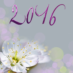 2016, cherry tree flower greeting card