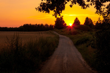 Zachód słońca na polu