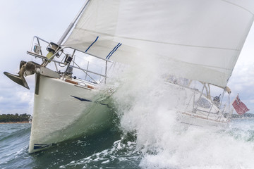 Sailing Boat Yacht