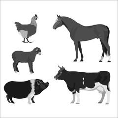 Animals farm. Cow, horse, lamb, chicken. Monochrome vector illus