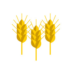 spike wheat vector icon