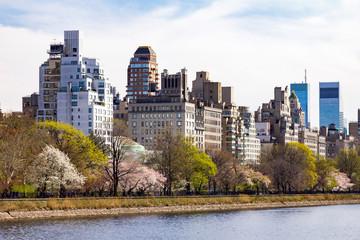 New York City Central Park Spring Landscape Scene