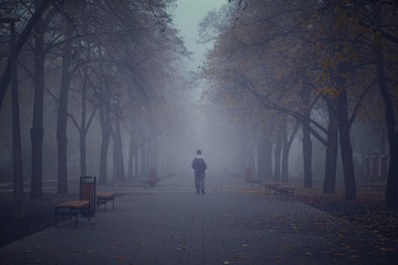 Man walking in the foggy park