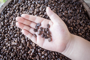 Coffee bean on hand