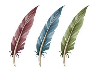 Set of three feathers