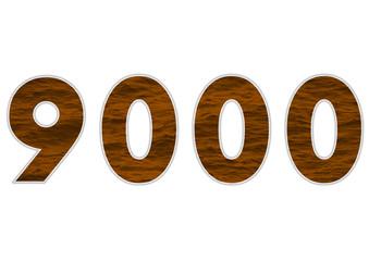 9000 sayısı