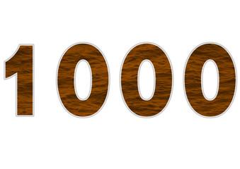 1000 sayısı