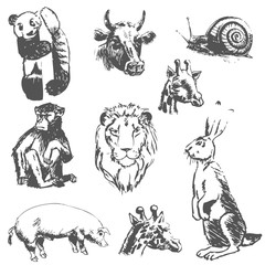set of hand-drawn vector animals