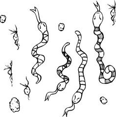 Snakes sketch