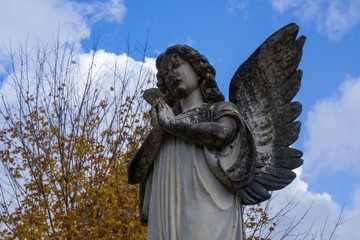 Angel Statue under Blue Sky and surrounded by Fall Foliage