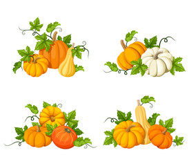 Set of vector orange pumpkins and leaves isolated on a white background.