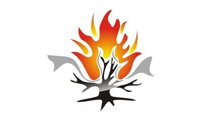 Burning Bush Technology