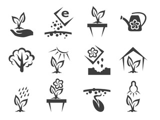 Wall Mural - Plant and sprout growing vector icons set