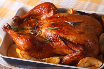 Whole roasted chicken with apples and oranges in the baking dish