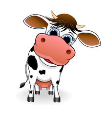 Cow .  Cartoon spotty cow on a white background.