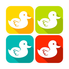Cute Duck Rounded Square Icons