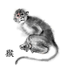 "Monkey oriental ink painting with Chinese hieroglyph ""monkey"". Isolated on white background. Symbol of the new year of monkey."