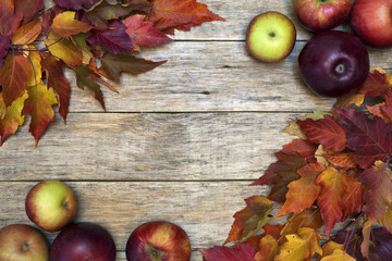 Beautiful closeup background with colorful leaves and red-ripe apples on old wooden board. Bright autumn colors. Delicious fruit. Image of natural materials. Eco style.