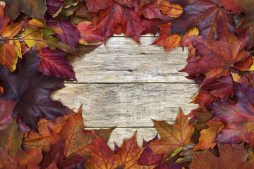 Beautiful colorful background with red and yellow leaves on old wooden board. Bright autumn colors. Image of natural materials. Eco style.