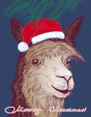 Christmas vector illustration with a cheerful alpaca