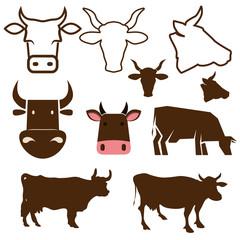 cow labels