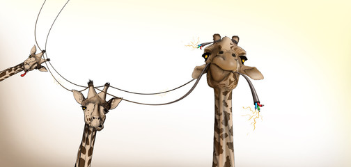 drawing of a giraffe