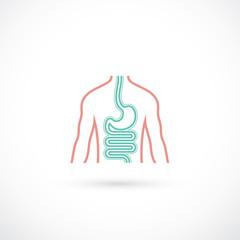 Human digestive system symbol