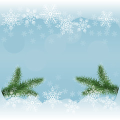 vector winter background with snowflakes and pine branches