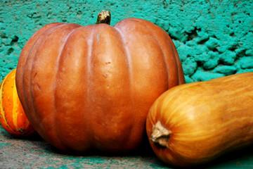Orange pumpkin in autumn background