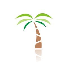 icono palmera color FB reflejo