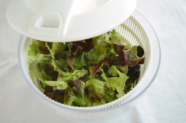 Green salad leaves being dried in a kitchen spinner