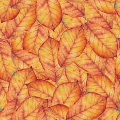 Seamless pattern with orange autumn leaves. Original hand drawn bright colors watercolor background.