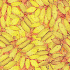 Seamless pattern with yellow and orange autumn leaves. Original hand drawn bright colors watercolor background.