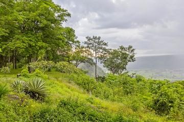Fototapeta forest and mountains landscape in rainy season